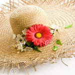 http://www.dreamstime.com/stock-photos-straw-hat-floral-decoration-image4461293